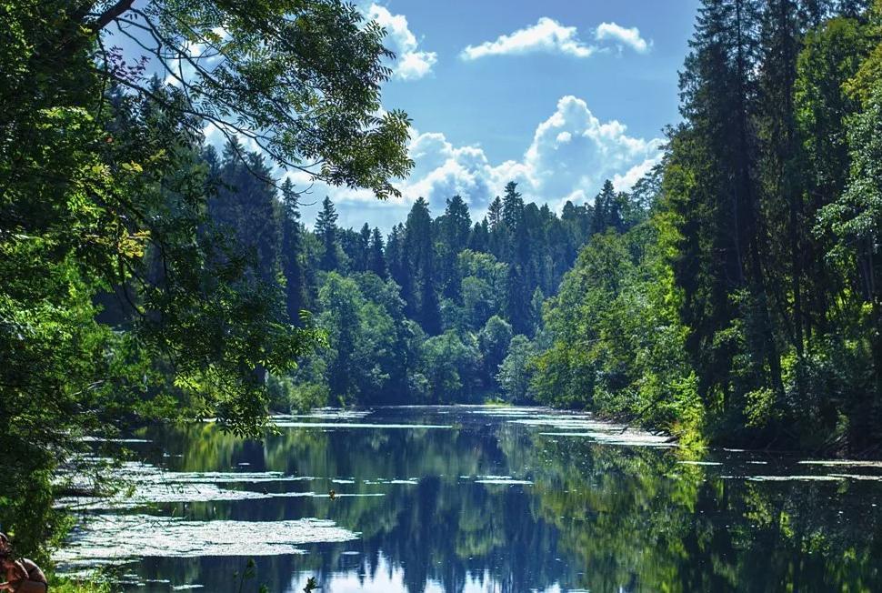 радоновое озеро в ленинградской области фото отличие популярных прошлом