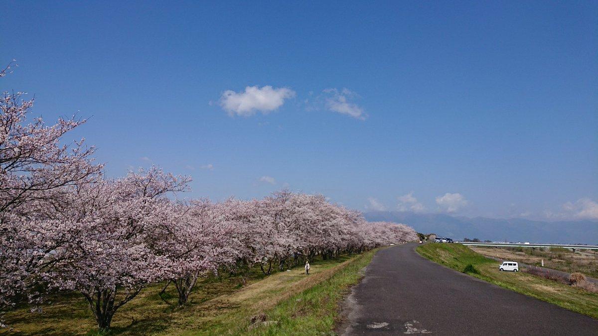 守山 滋賀 天気 県 市