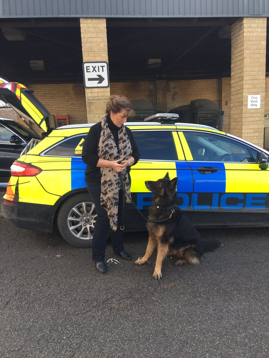 1dc539784f Gloucestershire Police Dogs Section ( GlosPolDogs)
