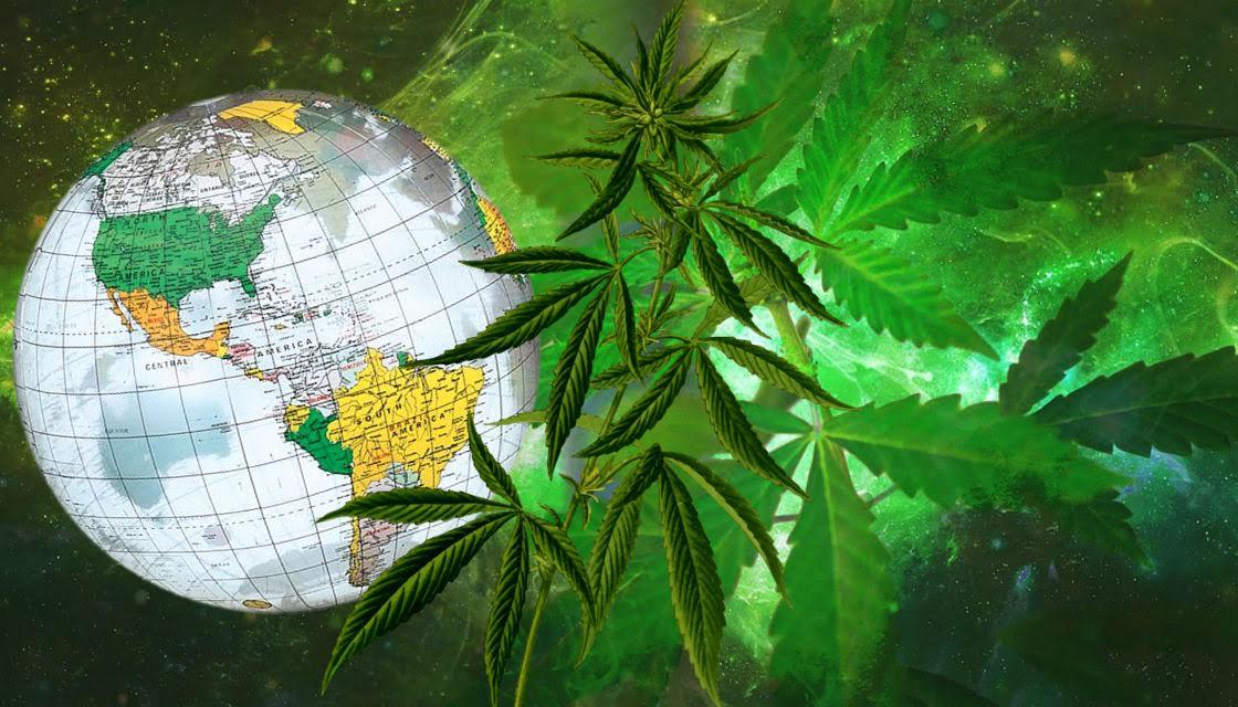 大麻历史与未来:大麻从何处来,又要到何处去?