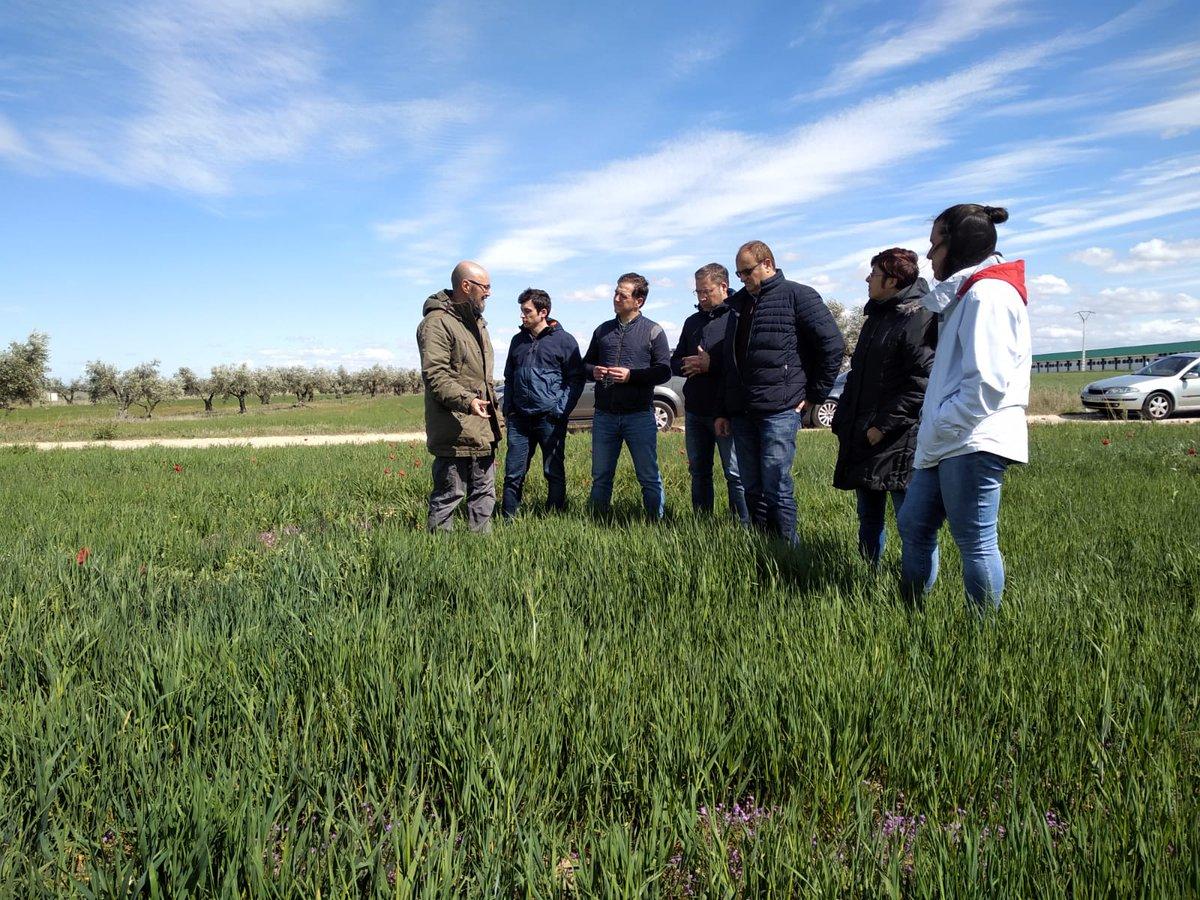 La #red de pioneros ecológicos @ecopionet sigue su trayectoria 👩🌾👩💻👨🔬👨🌾 En las imágenes, Técnicos/as asesores participando en el curso sobre cultivos extensivos #ecológicos en la Finca La Higueruela (Santa Olalla, #Toledo)  #ECOPIONET, #Innovación y #bioeconomía en el medio rural https://t.co/KcDzvmLrZU