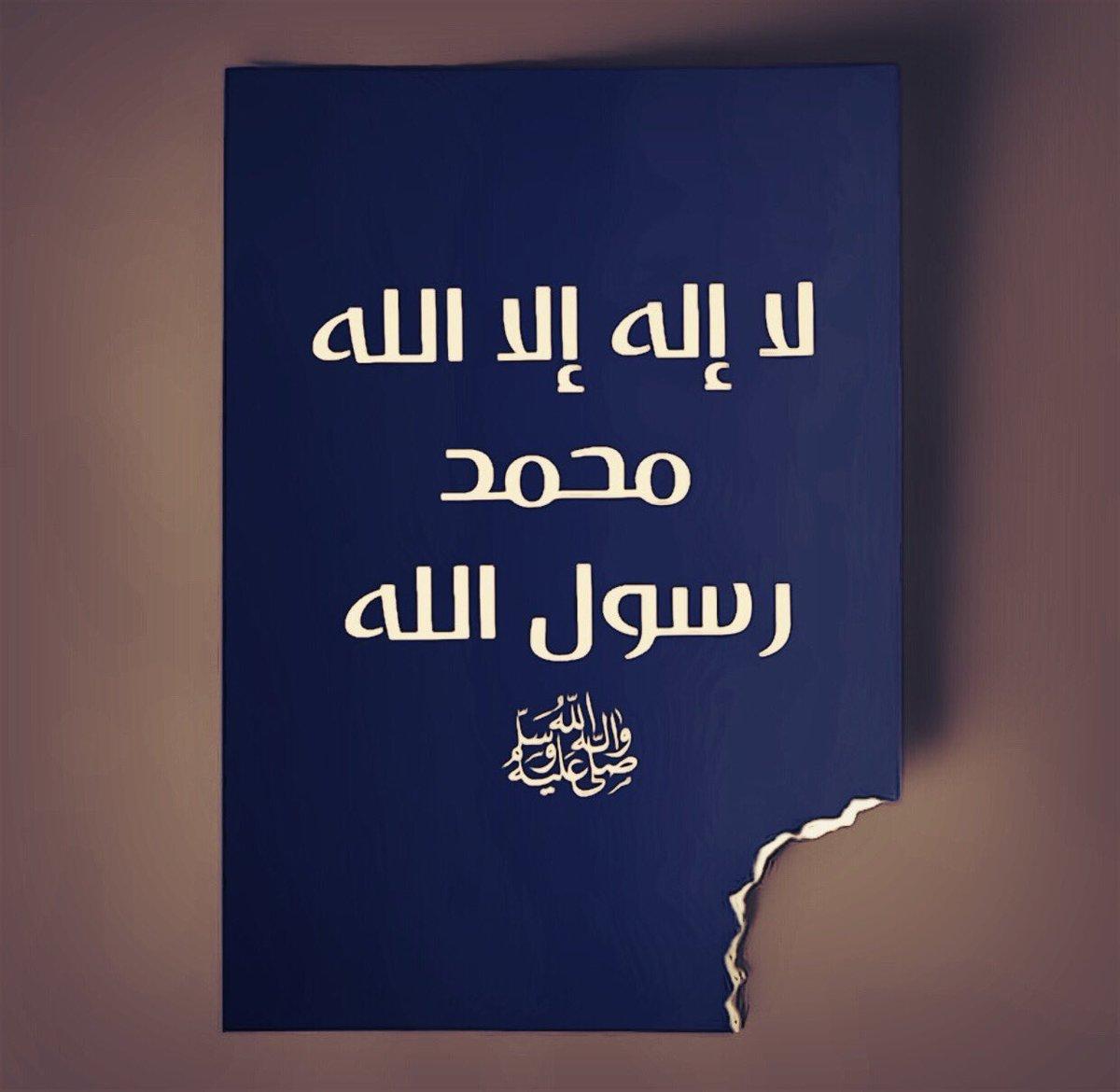 سجلوا حضوركم بالصلاة على محمد وآل محمد - صفحة 17 D3tY-PRXkAcd_G3