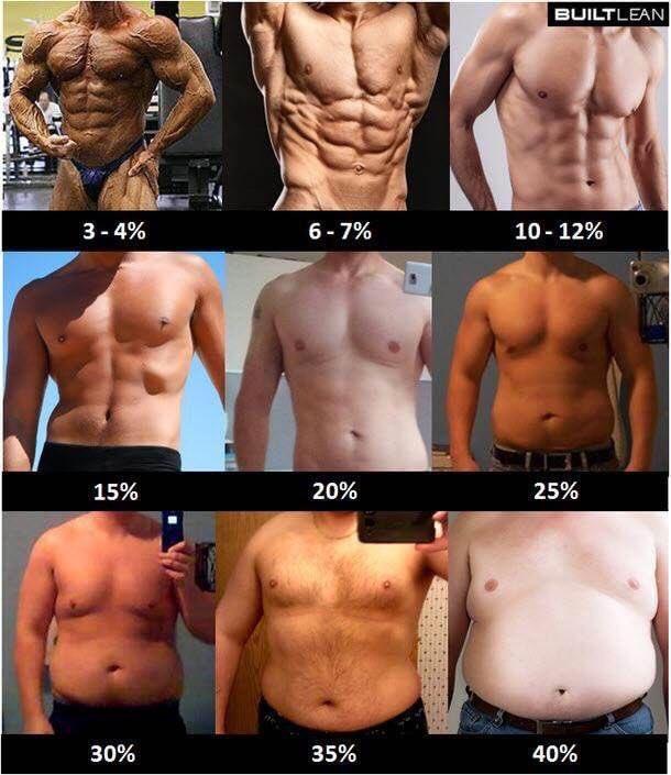 体脂肪率10パーセント以下 hashtag on Twitter