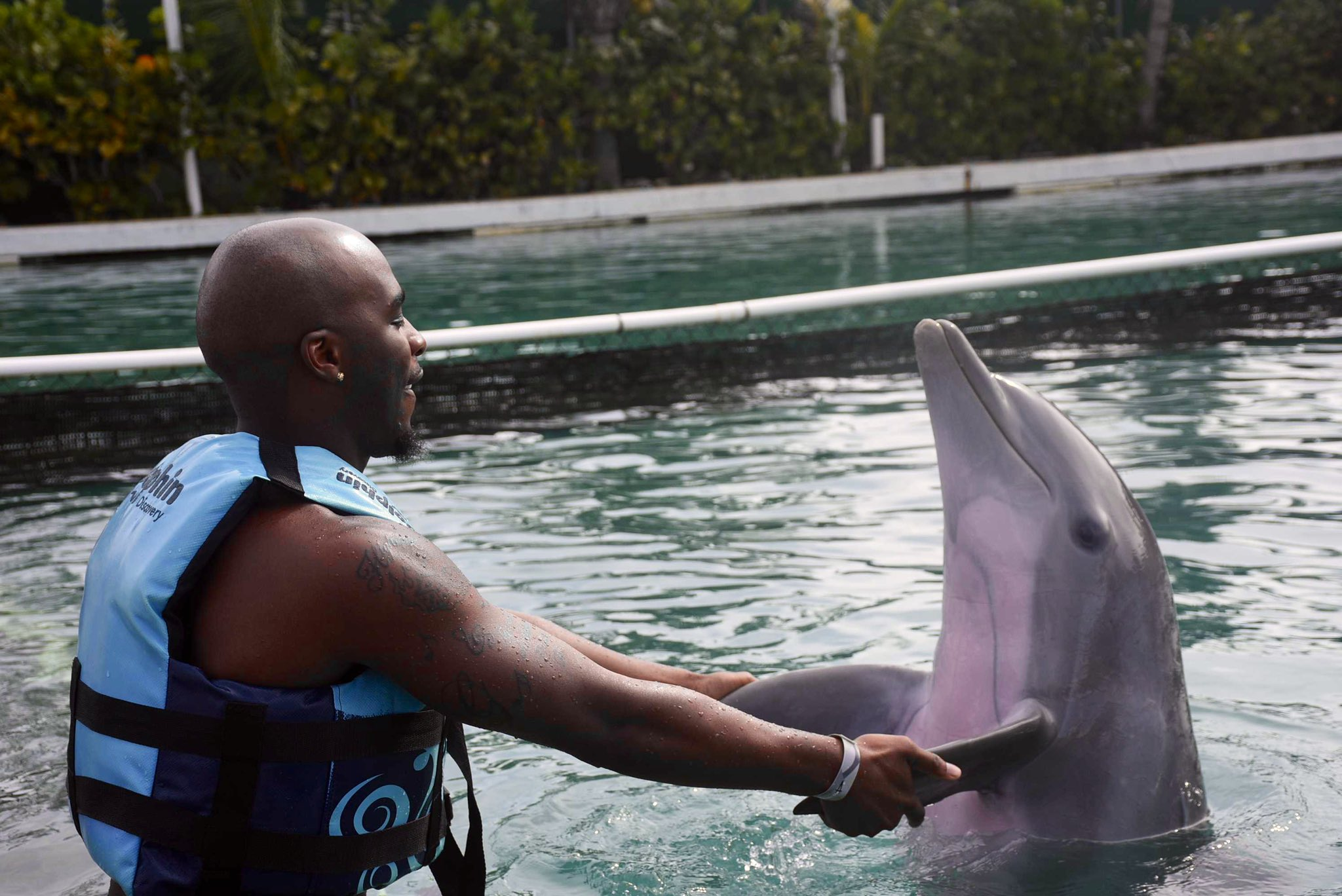 Ballgame On Twitter It S Jus Cinnamon And I Oh And Flipper Lol