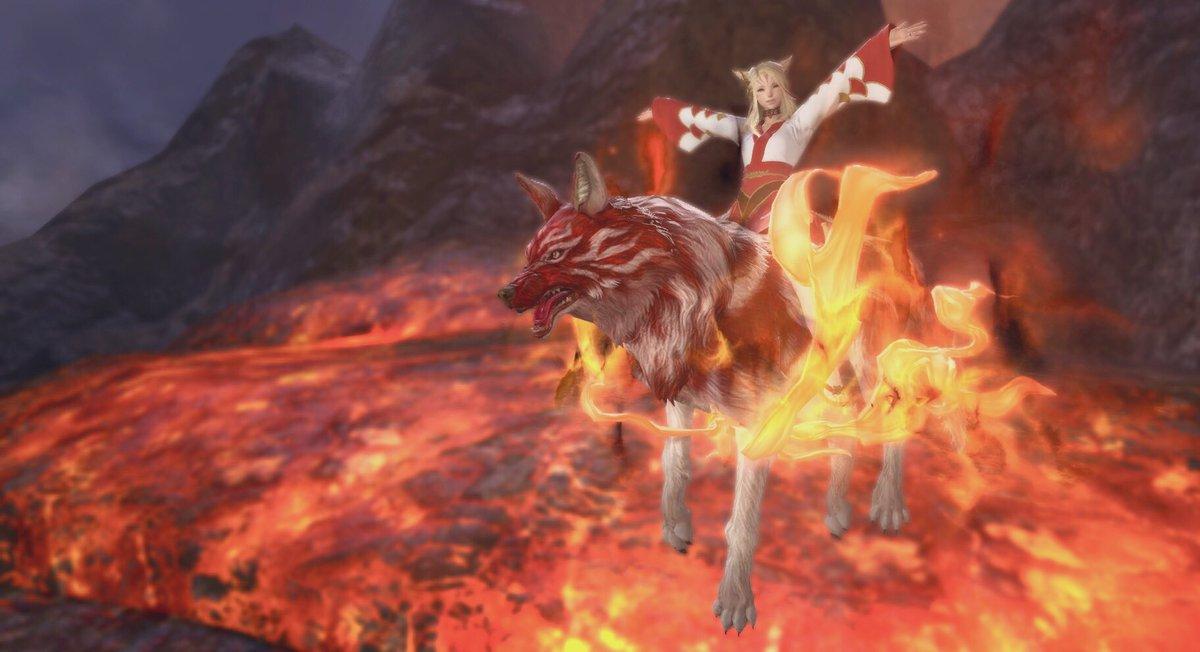 🔥 Suzaku Kamuy Accqired! 🔥 I finally have my favorite Wolf