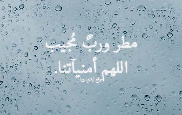 دعاء المطر Traola Twitterren