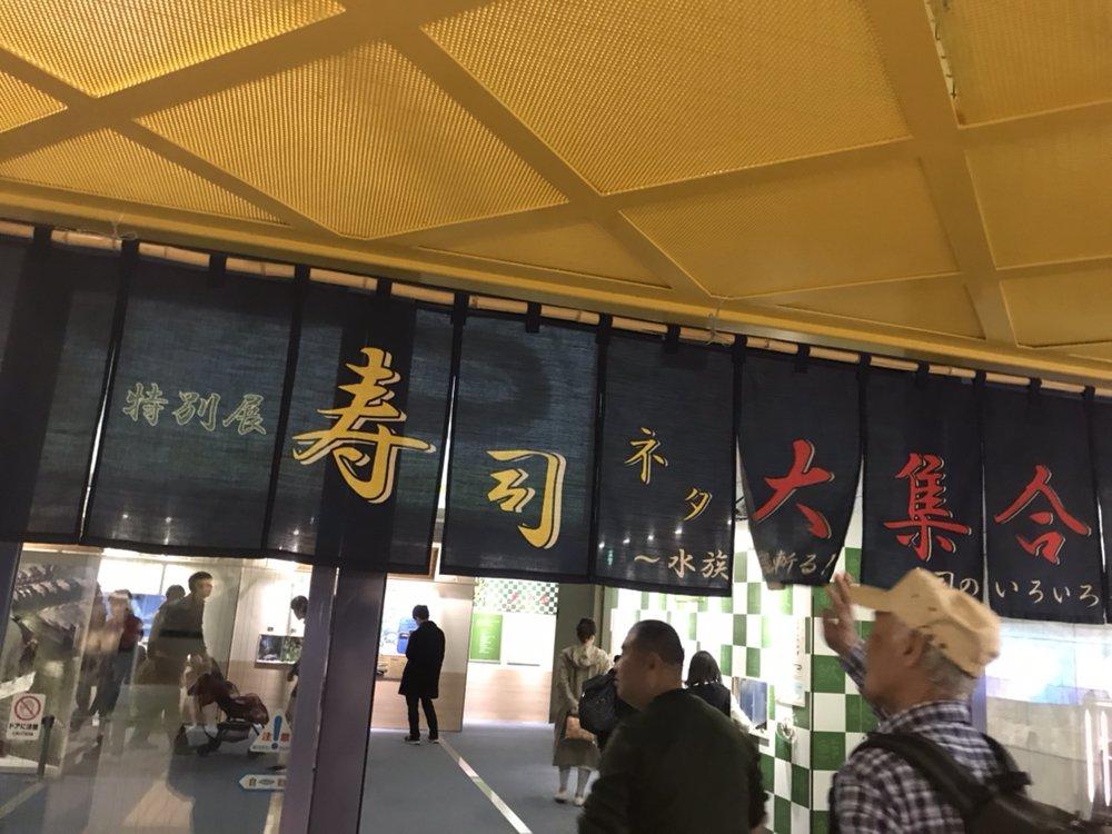 名古屋港水族館で、寿司ネタとその水族を展示するというサイコパスすれすれの企画を6/2(日)までやっている名古屋においでよ