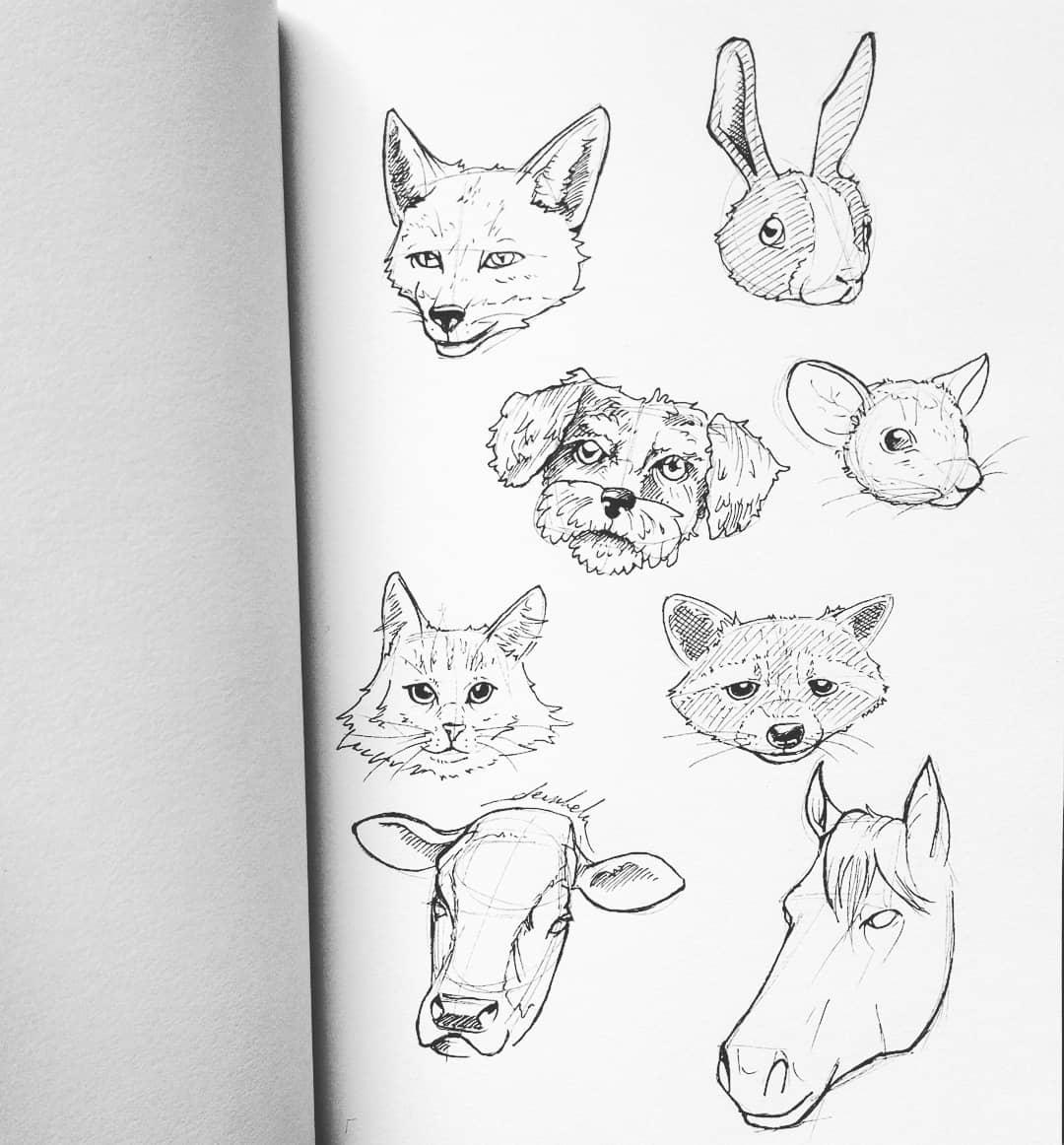 Animal heads #dailyart #dailyillustration #animalheads #animals #pets #dog #cat https://t.co/p75pznCqVG