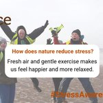 Image for the Tweet beginning: How does #nature reduce #stress?🤔🌿🌳
