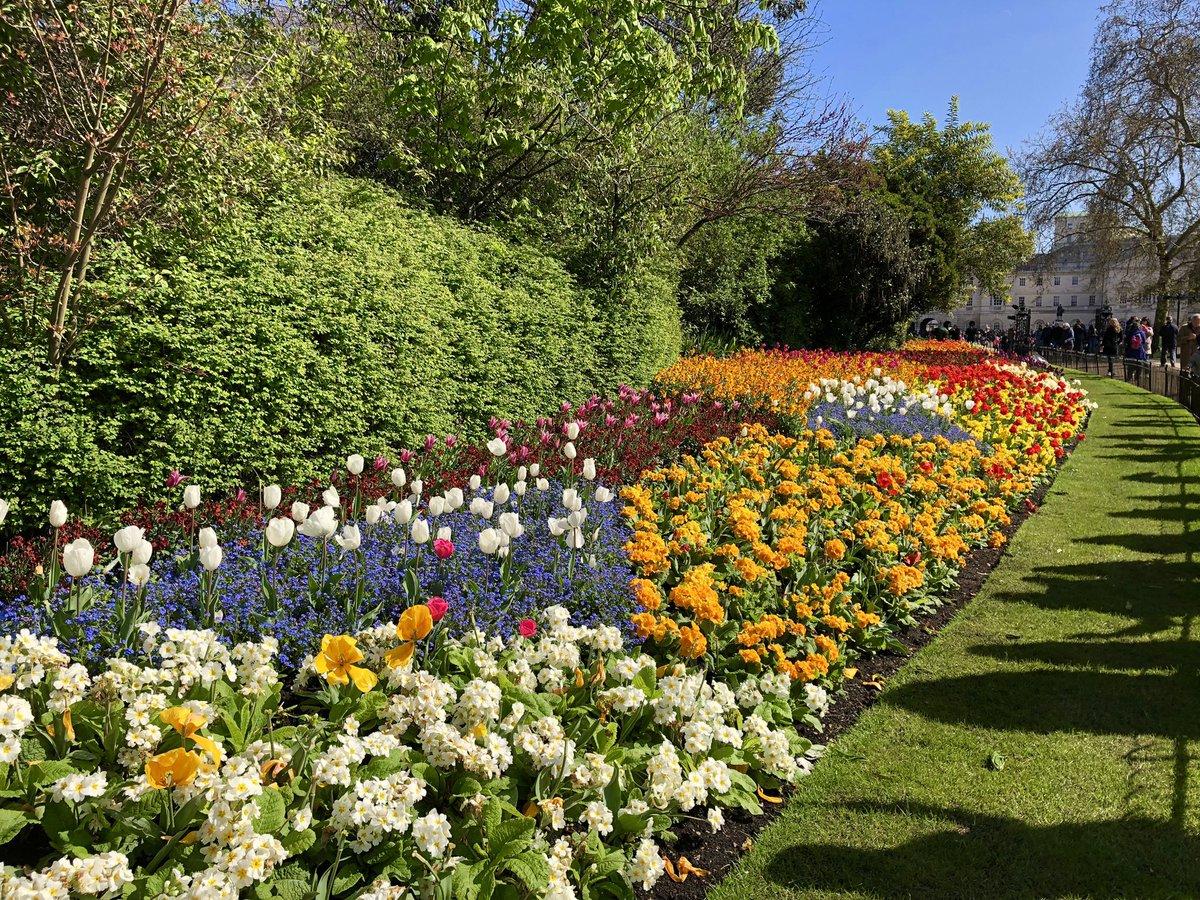 Thank you @theroyalparks  #LoveGreatBritain – at Horse Guards Parade