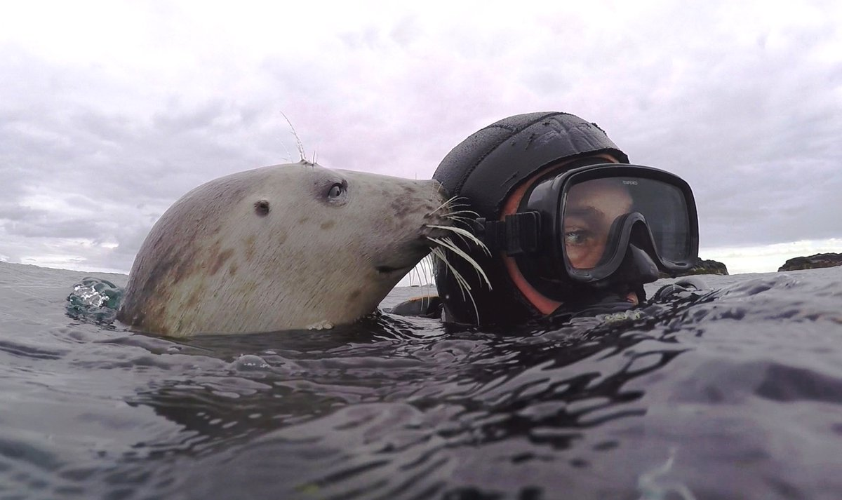 Looking fwd to interview tomorrow with @nhk_news #Japan  My #divebuddy will whisper in my ear if I get lost for words...