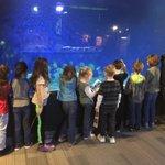 Image for the Tweet beginning: Auburn 1st graders are enjoying