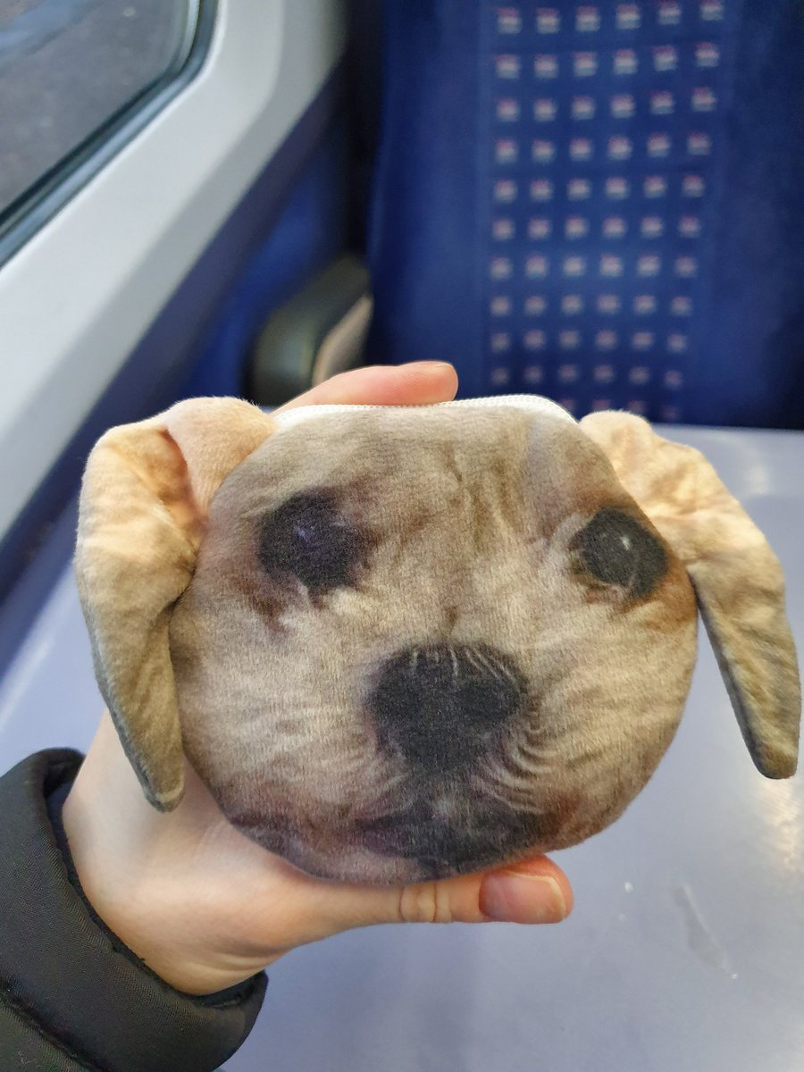 Aww it&#39;s so nice to see people appreciating The Smudge. &lt;3 My mum got me a purse with her face on for Christmas as a cute present (Smudge&#39;s face not mum&#39;s) but it just looks a bit creepy and always makes me laugh. <br>http://pic.twitter.com/pspxzC0Y4d