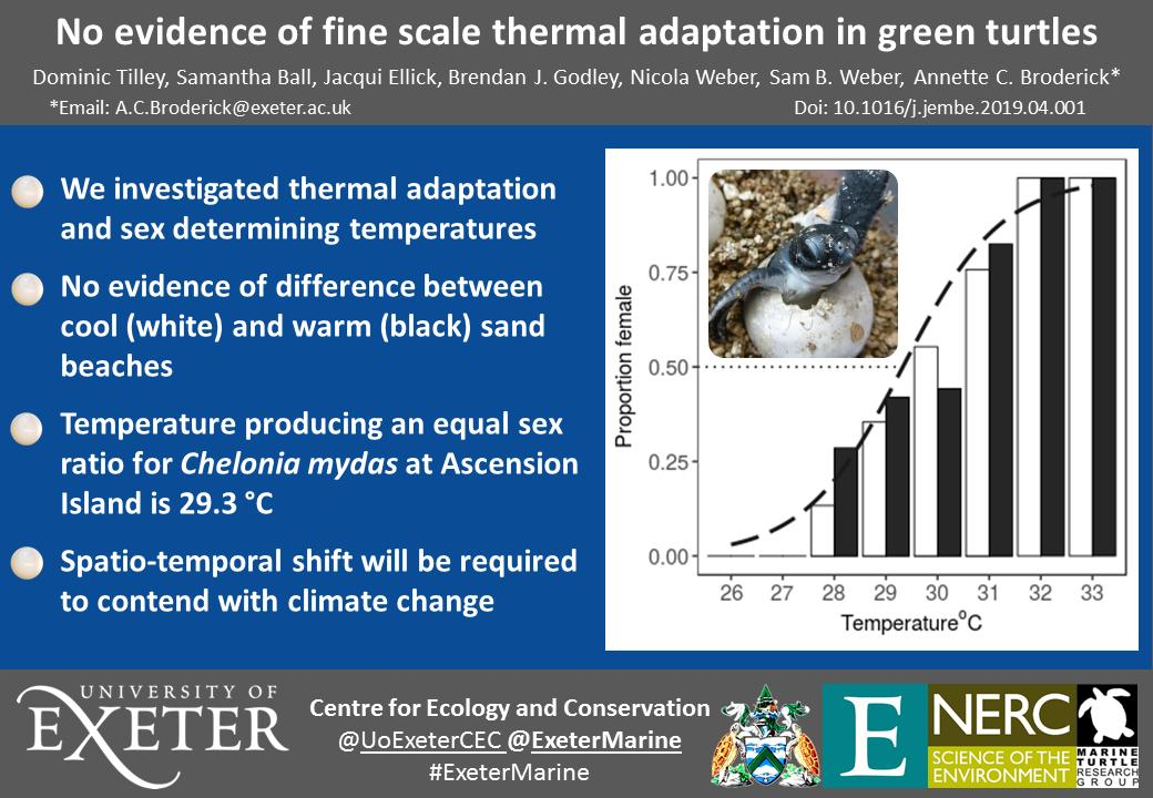 Fantastic #openaccess paper by PhD student @_TurtleDom finding no evidence of #adaptation in sea #turtles to the thermal properties of their nesting beaches, resulting in skewed sex ratios. Take a look and pls RT: http://ow.ly/jJlp50rsKGl @NERCscience