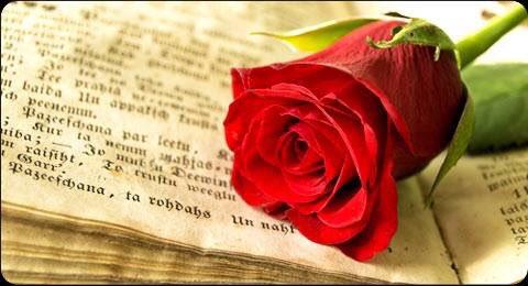 Montsegascoalcoberro On Twitter Bon Día De Sant Jordi Felicitacions A Tots Els Jordis