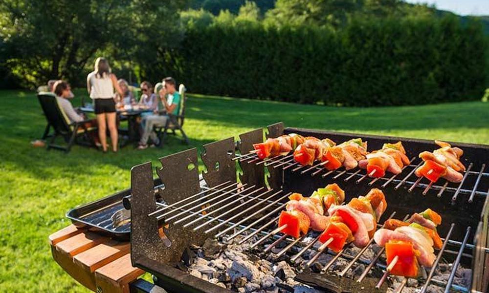 разработчики пикник в огороде дома фото блюда для