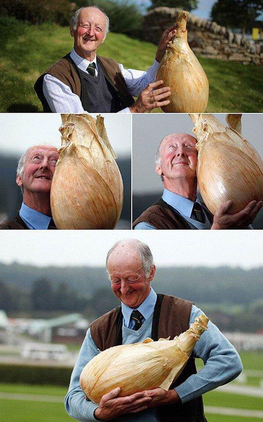 Посадил дед...