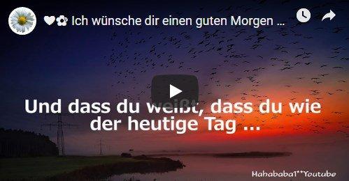 الوسم Videogruß على تويتر
