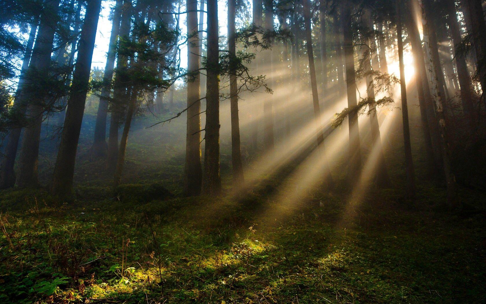 картинки лучи солнца в отличном качестве театральным