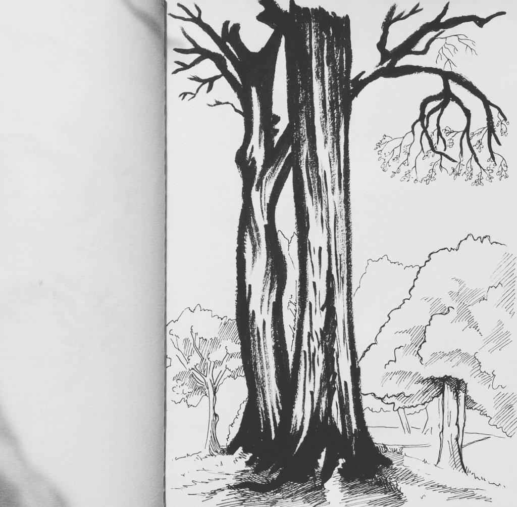 Trees 🌳 https://t.co/zFU3rPV74f https://t.co/Yryef8tVuH