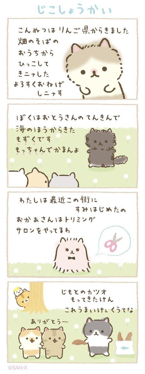 """ころころコロニャ【公式】🐾 on Twitter: """"あたらしい季節🌸 ひとみ ..."""