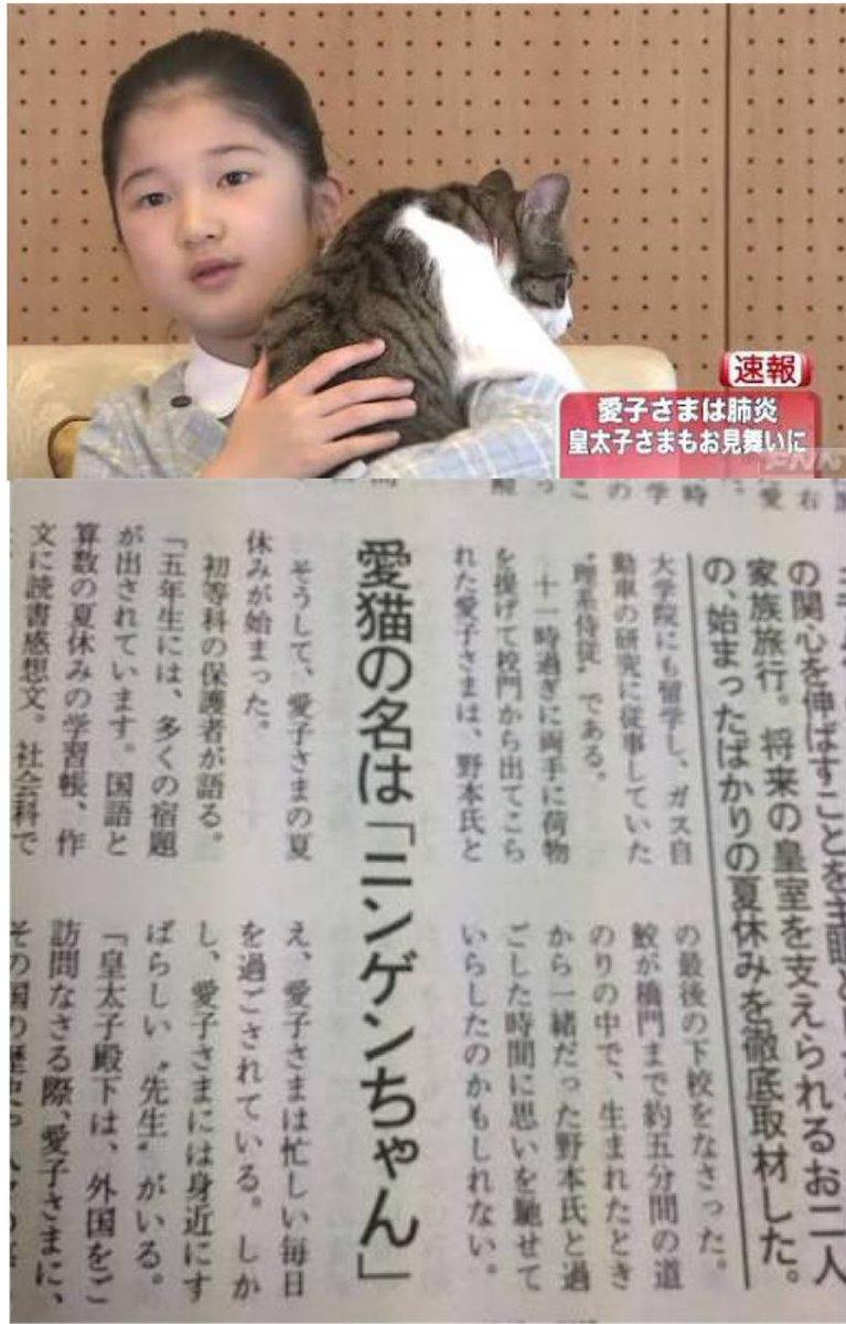 愛子様の飼ってる猫の名前が \u201cニンゲン\u201dなの闇が深そうで好き https//t.co/2zA75iuhiz