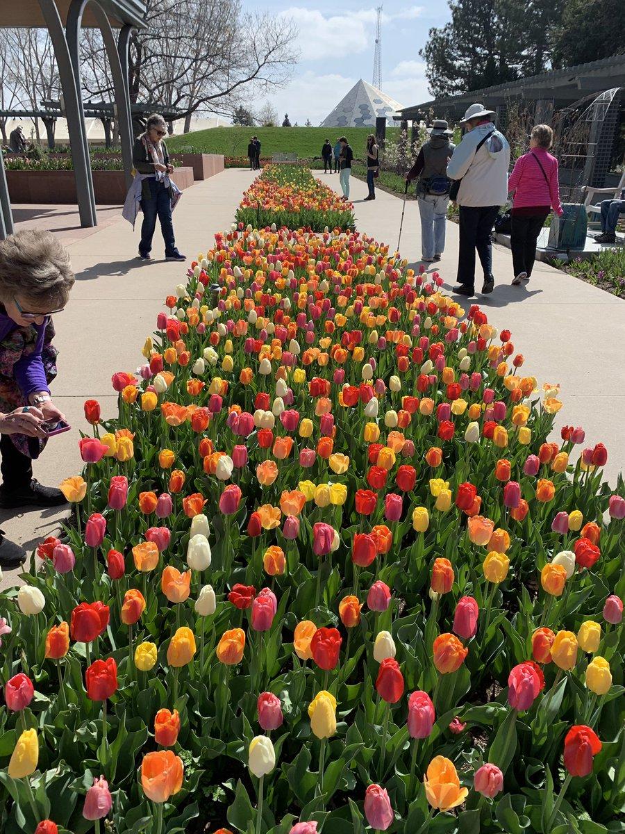 Denver Botanic Gardens On Twitter Very Nice