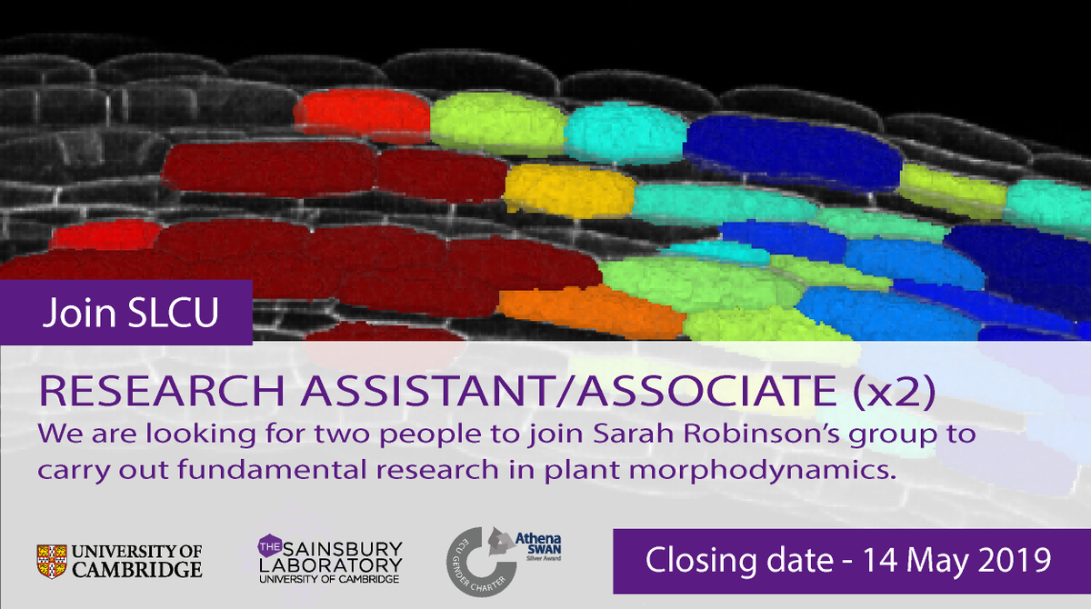 Plz RT: We are looking for two Research Associates/Assistants to join @RobinsonSci's #plant #morphodynamics #research group at the Sainsbury Laboratory @Cambridge_Uni.  Find out more at http://www.jobs.cam.ac.uk/job/21174/  @plantsci #jobs #PlzRT #postdoc