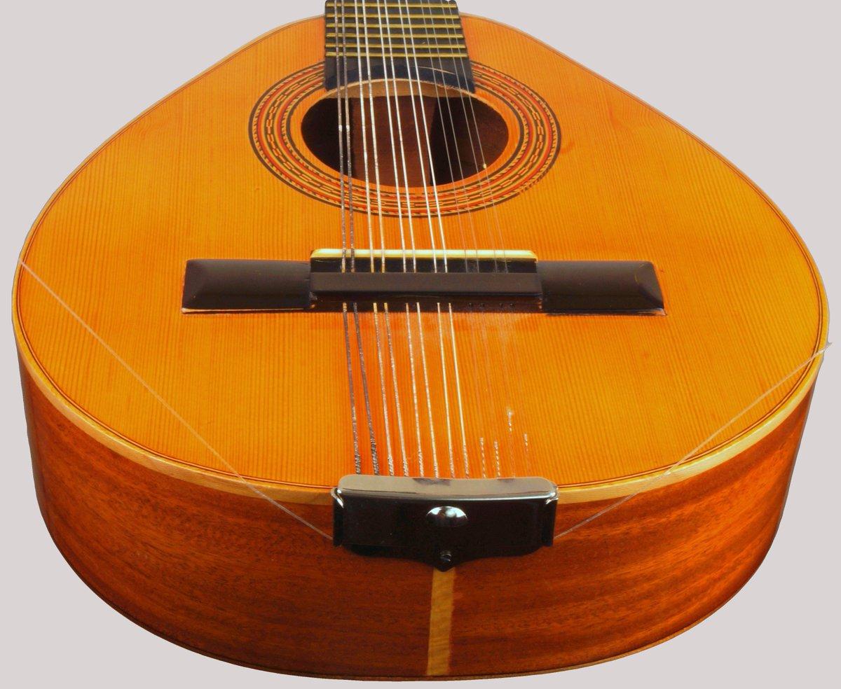 stumpy iberian twelve string mandolin