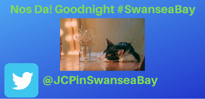 JCPinSwanseaBay photo