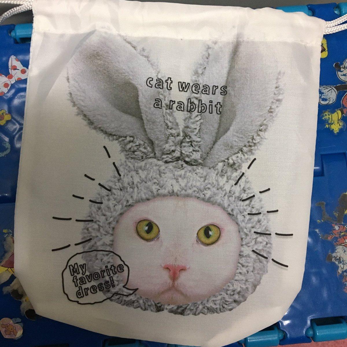 test ツイッターメディア - セリアの巾着、まじ可愛い。 他のやつも買いたかったけどとりあえずこれだけにした。 こういうの見るとうらちゃん思い出すなぁ。 うらちゃんは今頃天国で楽しく暮らしてるのかな✩°。⋆⸜(*˙꒳˙*  )⸝ #セリア #猫 #うらちゃん https://t.co/GDfC5Wbof8
