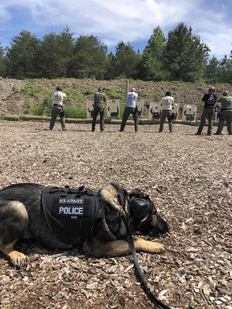 This is the end of a very long double duty training day.  Got pretty warm out on the range but proud of how calm Apart is while our team members shoot. #nocares #relaxing #warmouthere #gsd #k9 #workingdog #tongueouttuesday #k9apart #livepd #livepdnation<br>http://pic.twitter.com/n2yxdiVyzD
