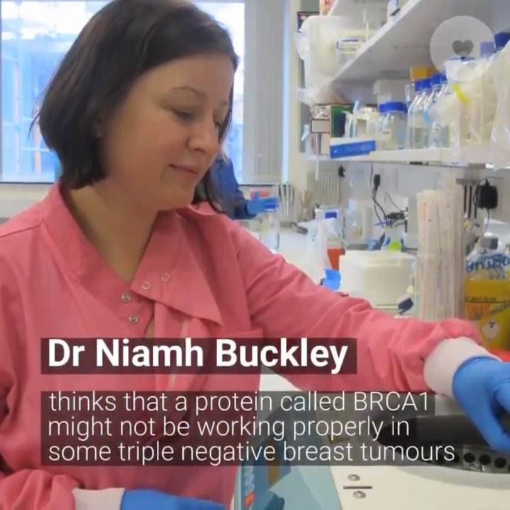 Image for the Tweet beginning: Triple negative breast cancers can