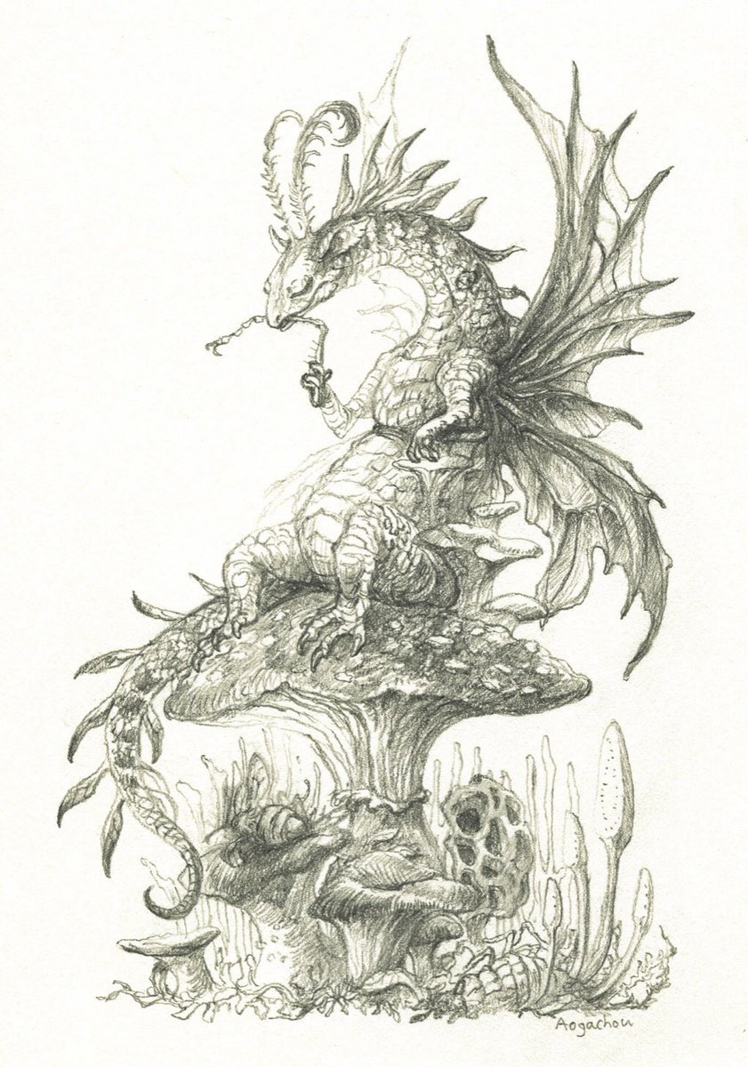 鉛筆とペン画編 #ドラゴンの日 #Aogachou