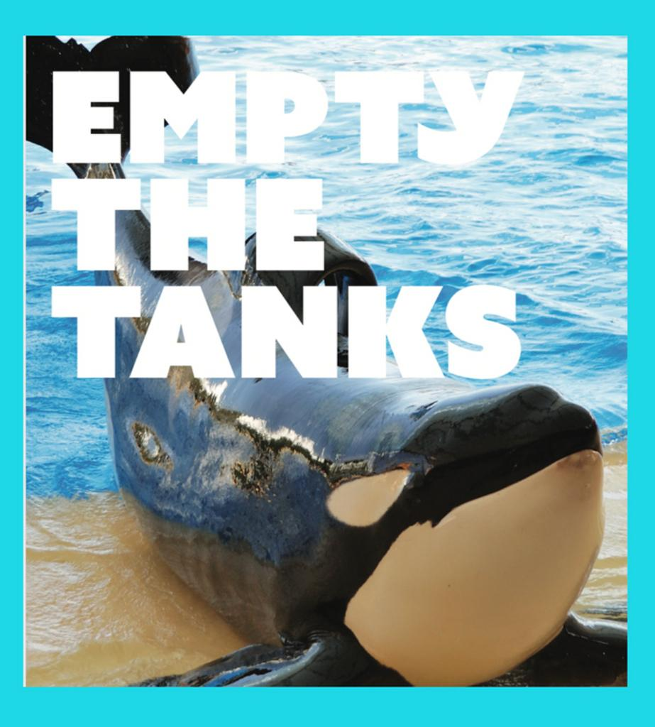 Save the date! 🐬 On May 11, say NO to the dolphin show and join thousands of activists across the world during the 7th annual Empty the Tanks worldwide event. See our latest blog post for locations and more info: https://bit.ly/2VjUOMd   #DolphinProject #EmptyTheTanks