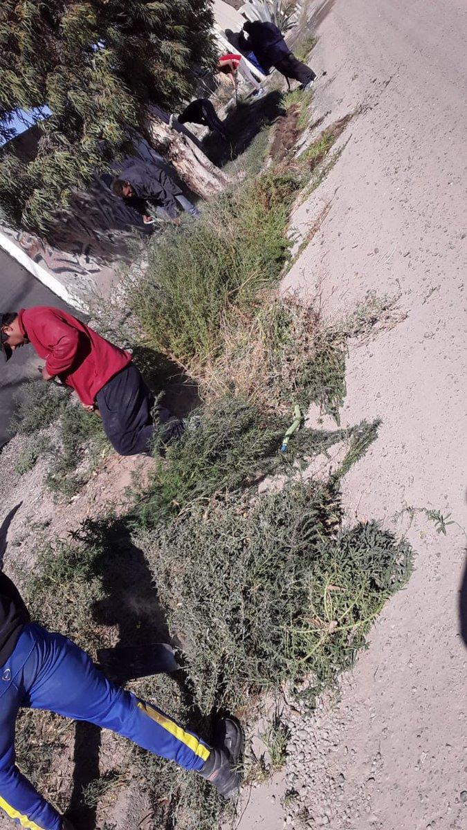 A pedido de los presidentes de los barrios   se efectuó limpieza en sectores del barrio Patagonia cuadrilla de mantenimiento y limpieza  de espacio verdes Marín  entre todos es más fácil gestion @ric_sastre @munimadryn mejor que prometer es realizar