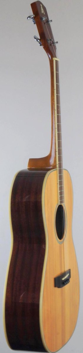 Gremlin Ashbury indonesian T14 4 string Tenor Guitar