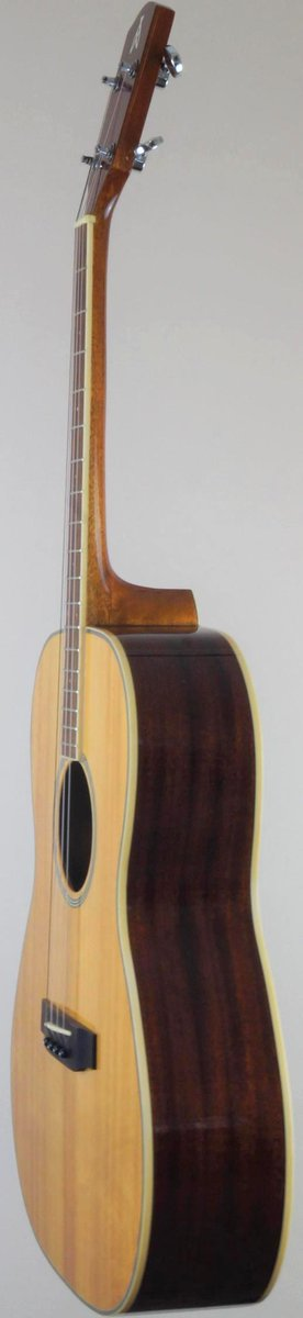 Gremlin Ashbury T14 Tenor Guitar