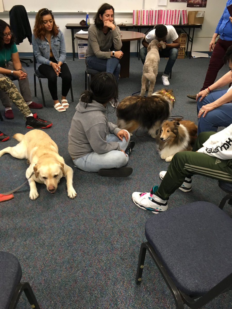 Thanks to <a target='_blank' href='http://twitter.com/PALdogs'>@PALdogs</a> for a wonderful time with your furry friends de-stressing. <a target='_blank' href='http://twitter.com/MrBNewD'>@MrBNewD</a> <a target='_blank' href='http://search.twitter.com/search?q=furryfriends'><a target='_blank' href='https://twitter.com/hashtag/furryfriends?src=hash'>#furryfriends</a></a> <a target='_blank' href='http://search.twitter.com/search?q=APSisAwesome'><a target='_blank' href='https://twitter.com/hashtag/APSisAwesome?src=hash'>#APSisAwesome</a></a> <a target='_blank' href='https://t.co/i31uW58fVA'>https://t.co/i31uW58fVA</a>