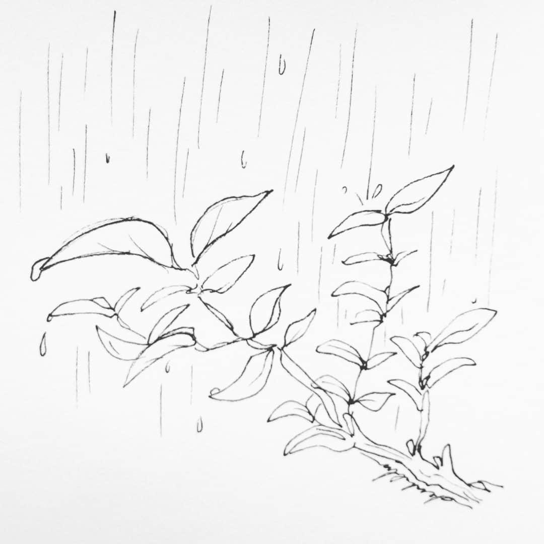 Rainy day 💧 #dailyart #dailyillustration #rainyday #rain #raining #trees #drops https://t.co/u4JSmItrge