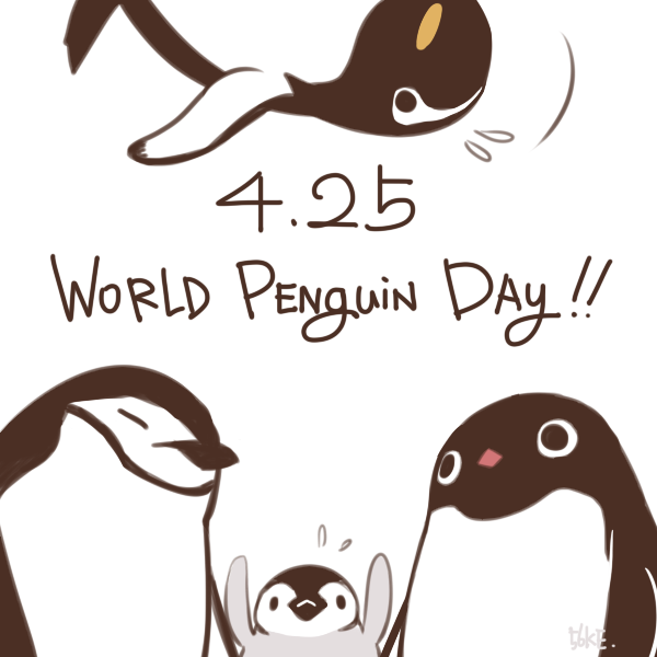 아델리만쥬AdelieManjoo's photo on #WorldPenguinDay