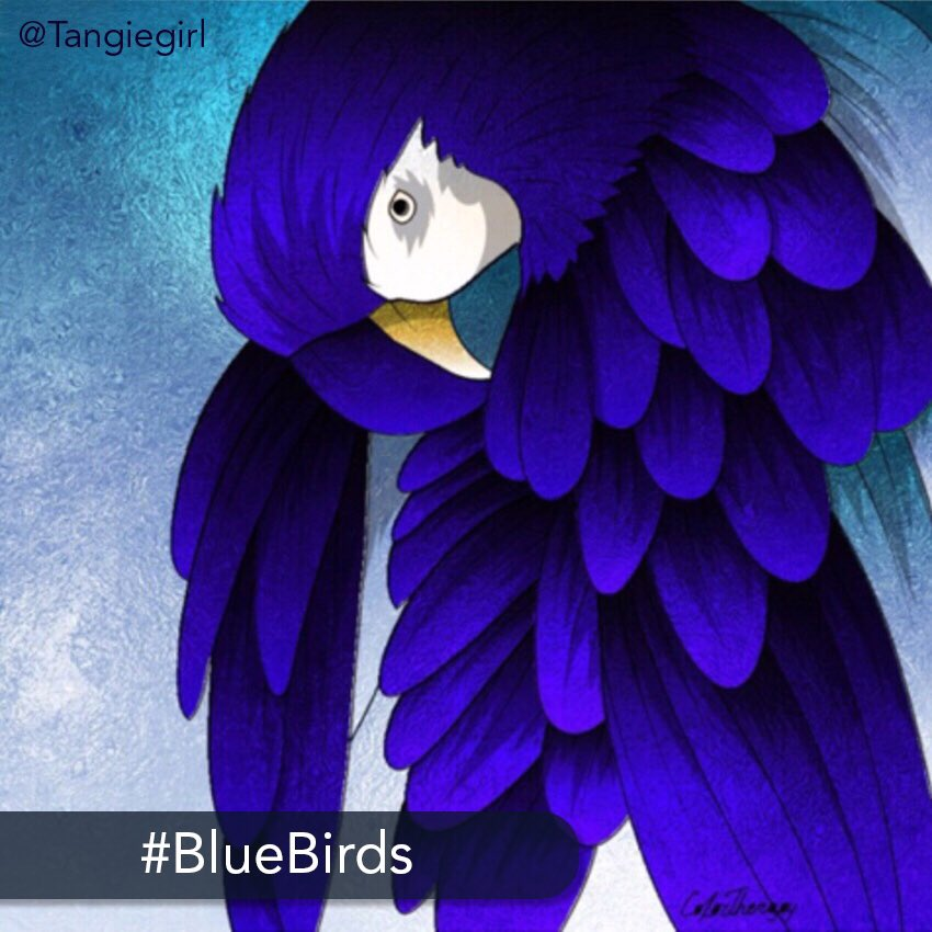 👑 The challenge: Today's #medium #challenge is to be #creative and #color these #beautiful #birds in mostly #blue #shades. ❤️ Start coloring today on your iPhone or iPad: http://get.colortherapy.me #color #coloring #coloringbook