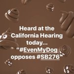 Image for the Tweet beginning: BAM!!! No on #SB276 #2000oppose