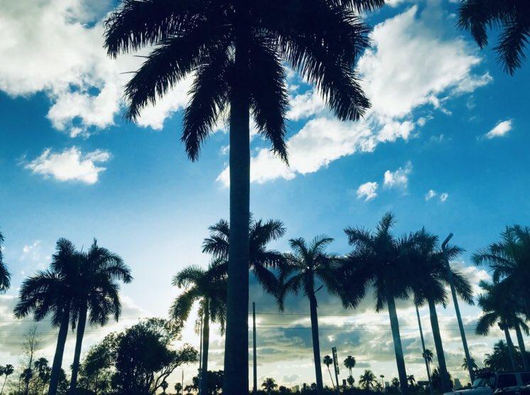 Miami.❤️