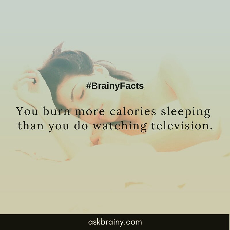 #factoftheday #facts #health #helthylifestyle #diet #human #television #technology #sleeping #sleep #askbrainy #amazing