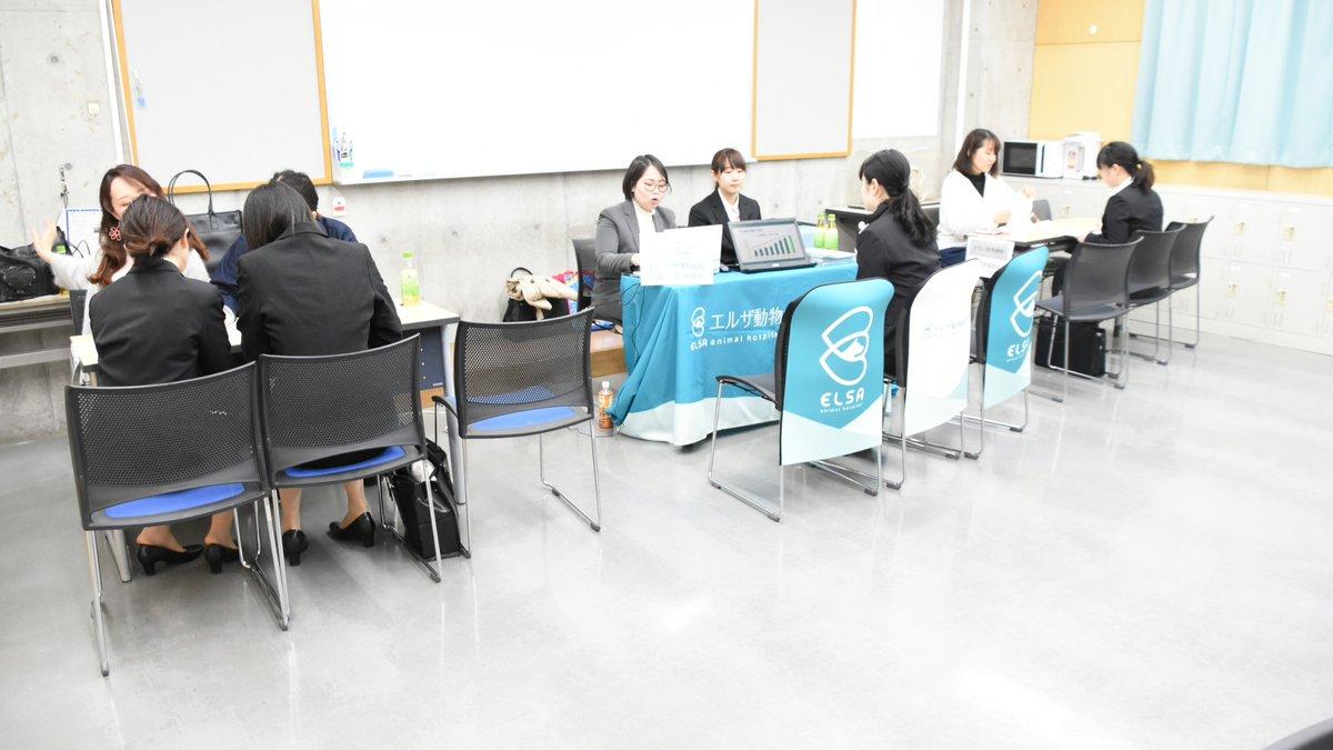 今日ペピイでは学内就職セミナーでした?多くの病院様にご参加いただき、貴重なお話を聞く事ができました?✨ご多忙のなか、お越しくださいました病院様には心より感謝御礼申し上げます。#大阪ペピイ動物看護専門学校#ペピイ