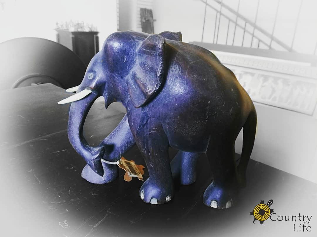 Wooden Elephant #countrylifesl #wood #woodcraft #woodcarving #woodart #woodforlife #tusker #woodelephant #elephants #srilankanelephant #srilankanelephants #madeinsrilanka#handcarved #srilankastyle #luxurylifestyle #stylish #luxuryliving #modenhome #colombo #srilankapic.twitter.com/bR1dAGLBW9