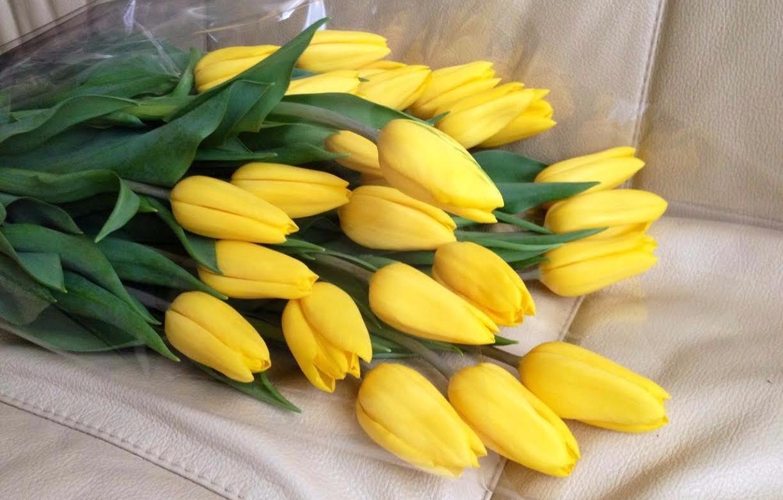 С днем рождения желтые тюльпаны открытки, ручной работы под