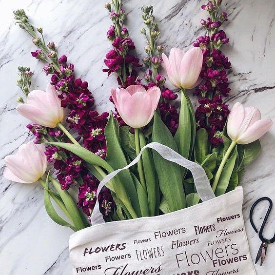 çiçek Market At Cicekmarket Twitter Profile And Downloader Twipu