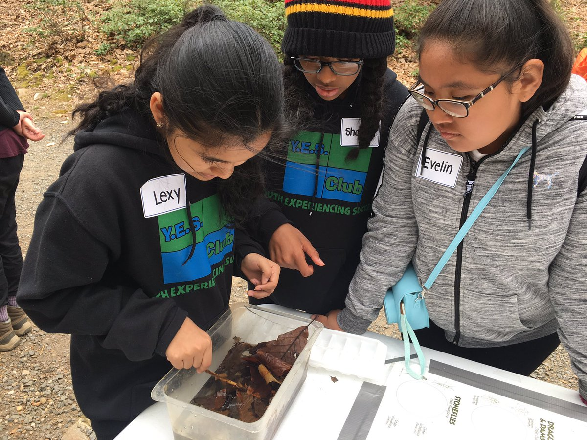 Exploring the biodiversity at Outdoor Lab led to lots of interesting questions, conversations, and discoveries <a target='_blank' href='http://twitter.com/CampbellAPS'>@CampbellAPS</a> <a target='_blank' href='http://twitter.com/_MrDany'>@_MrDany</a> <a target='_blank' href='http://search.twitter.com/search?q=OutdoorLearning'><a target='_blank' href='https://twitter.com/hashtag/OutdoorLearning?src=hash'>#OutdoorLearning</a></a> <a target='_blank' href='https://t.co/i1IpWYZKYb'>https://t.co/i1IpWYZKYb</a>
